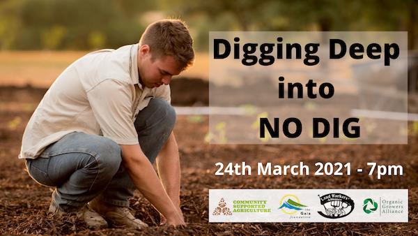 Digging Deeper into No Dig gardengin